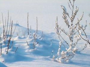 Sitzsäcke und Winter - kein Problem wenn es richtig gemacht wird!
