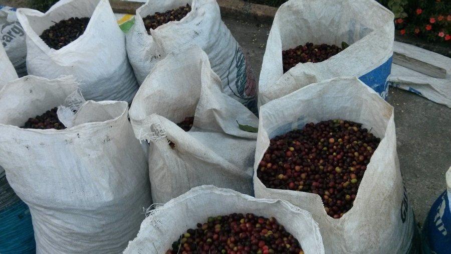 Bohnen Sack zu englisch Bean Bag