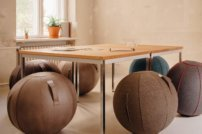Der VLUV Sitzball – mehr als ein ergonomisches Sitzmöbel